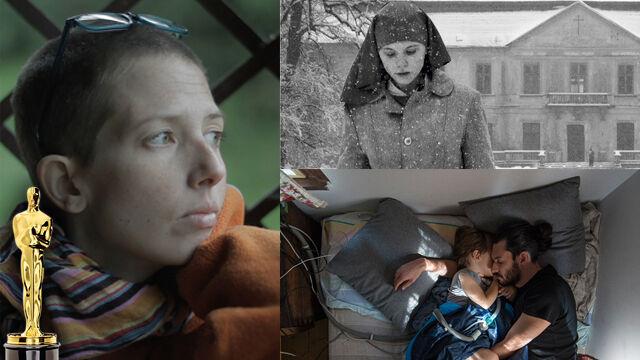 Pięć nominacji w czterech kategoriach. Tylu Polaków w boju o Oscary jeszcze nie było