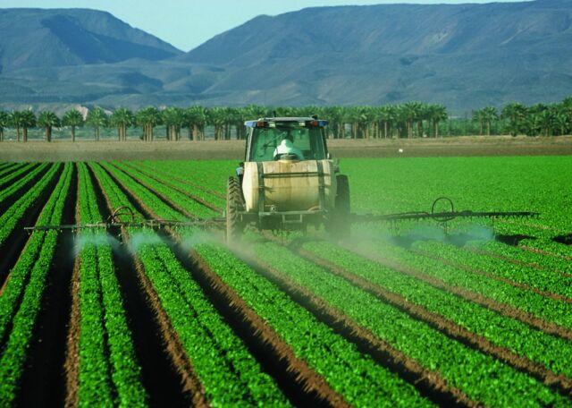 """Używane na masową skalę pestycydy """"prawdopodobnie rakotwórcze"""""""