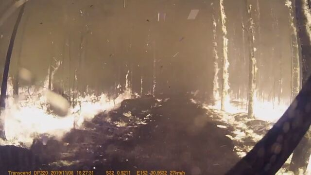 Pośród płomieni i palących się drzew. Strażacy jadą do pożaru