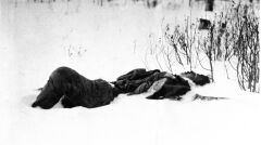 Bolszewicki żołnierz zabity podczas ataku na pozycje Amerykanów. Okolice Archangielska, 8 kwietnia 1919 roku