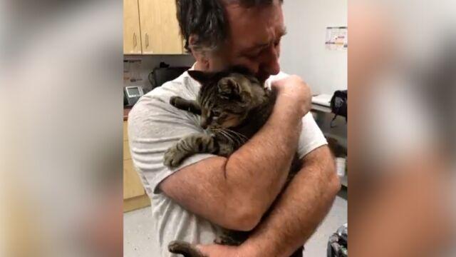 Odnalazł kota po 7 latach. Wzruszające spotkanie