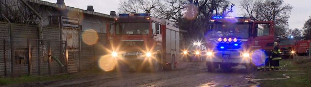 Ponad 800 prosiąt spłonęło w chlewni