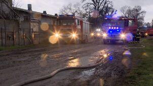 W pożarze chlewni zginęło ponad 800 prosiąt