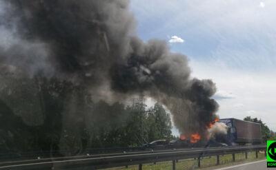 Zderzenie i pożar pod Szczecinem. Sześć osób nie żyje, szesnaście rannych