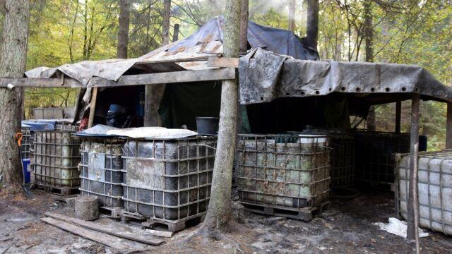 Zlikwidowali gigantyczną leśną bimbrownię. Pięć osób zatrzymanych