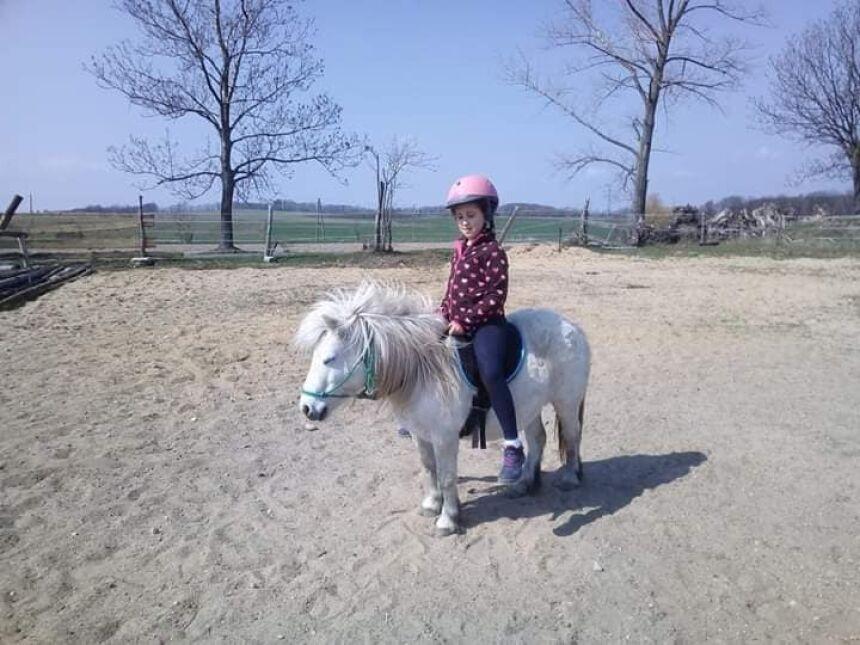 8-letnia Amelia tęskni za swoją Różyczką