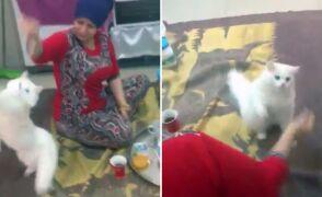 Kunkush bawi się ze swoją panią w domu w Mosulu