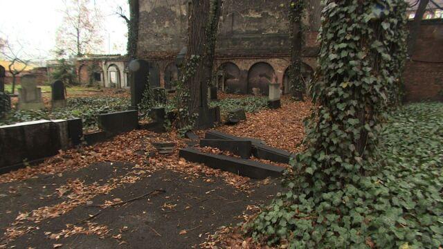 12-latek zdewastował żydowski cmentarz