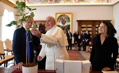 Tusk spotkał się z papieżem. Podarował mu dąb z Polski