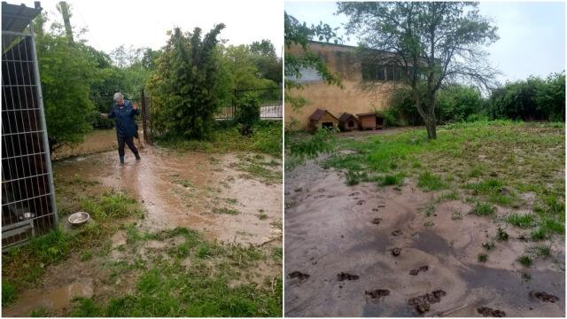 Przytulisko dla zwierząt zalane po ulewach. W sprzątaniu pomagają więźniowie