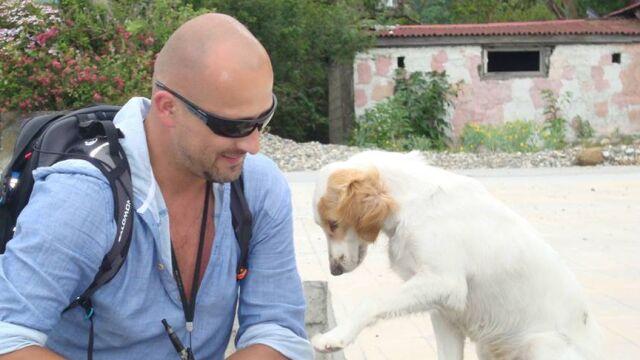 Odnaleźli psa spotkanego w Gruzji. Ściągają Sookie do Polski