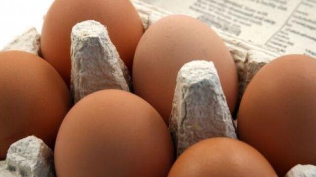Warta Poznań: kupisz bilet, dostaniesz 30 jajek