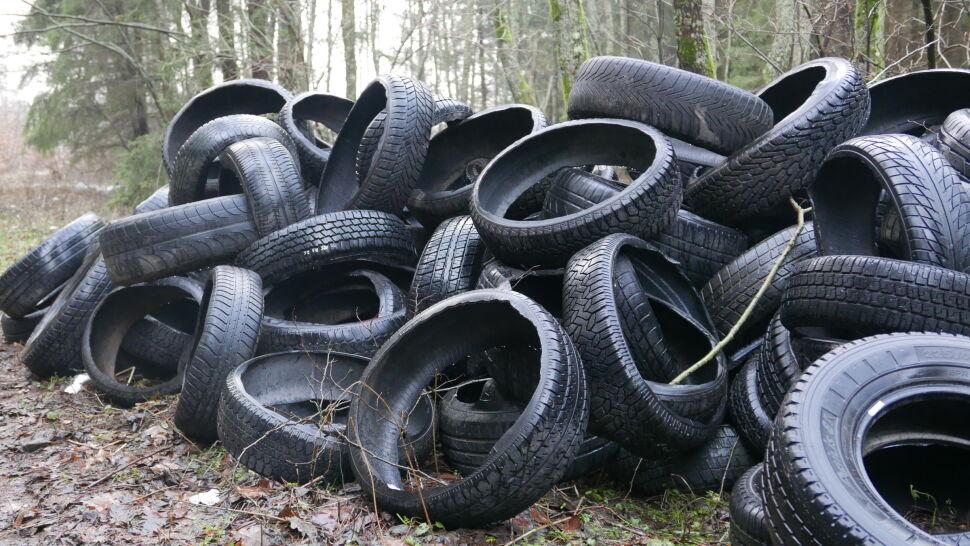 Ponad tysiąc opon porzuconych w środku lasu