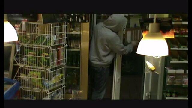 Właściciel sklepu nagrał złodziei