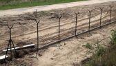 Budują ogrodzenie tarczy antyrakietowej