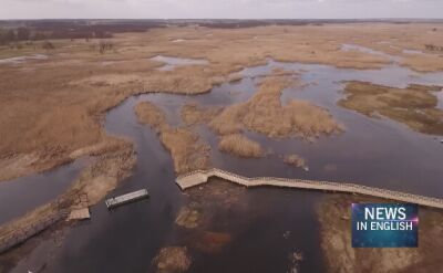 The Narew National Park has new boardwalks installed