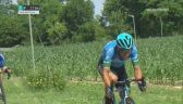 Elia Viviani wygrał 1. etap Adriatica Ionica Race