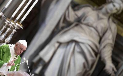 Papież Franciszek: myślimy, żeby zdefiniować grzech ekologiczny