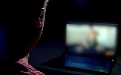 Pornografia w internecie może zastąpić edukację seksualną