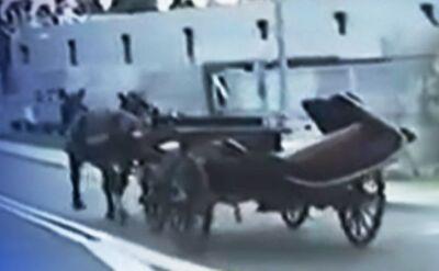 27.09.2014 | Spłoszone konie, pędząca bryczka i policyjny pościg