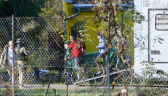 Tygrysy uwolnione z klatek