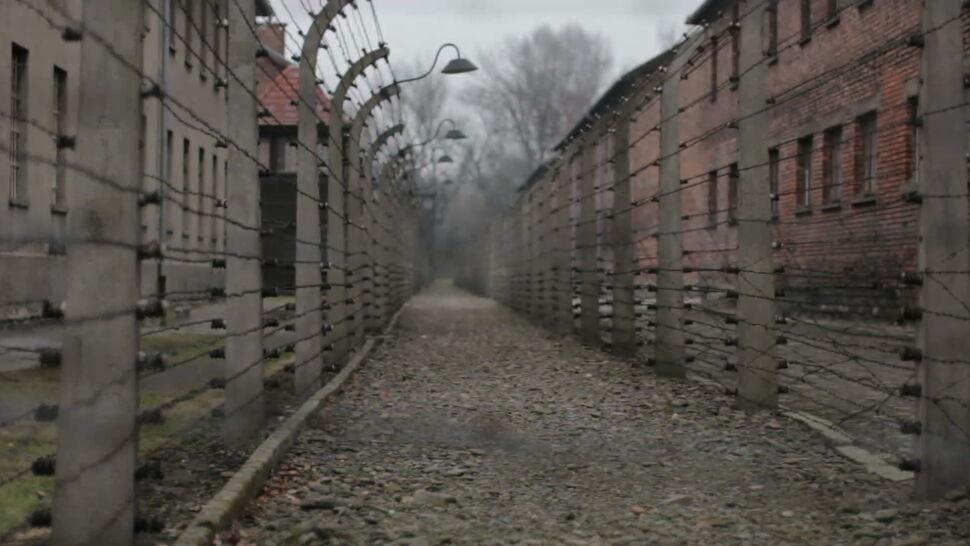 Albo zakaz stadionowy, albo wizyta w Auschwitz. Tak Chelsea chce walczyć z rasizmem