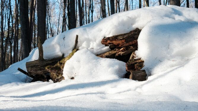 Topniejący śnieg może powodować lawiny. <br />Trzeci stopień zagrożenia w Tatrach