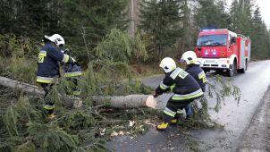 Silny wiatr na południu Polski. Niemal tysiąc interwencji strażaków
