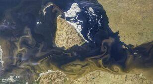 Osady wypływające z rzek rysują na morzu malownicze wzory