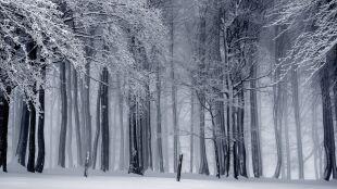 Prognoza pogody na jutro: zimno, miejscami śnieżnie