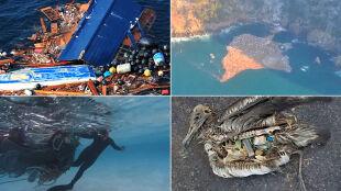 """Plastikowa """"zupa"""" w oceanie. Wyspa śmieci truje i wyniszcza"""