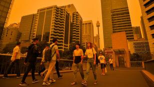 Pożar szaleje, kłęby dymu spowiły Sydney