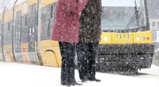 Zimowe relacje z polskich miast