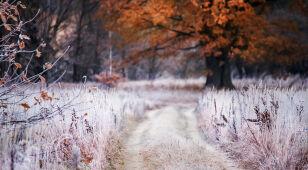 W niedzielę aura zacznie zmieniać się w zimową